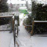 Snowy move in the winter